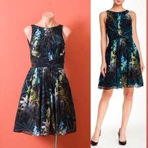 Ted Baker London Ameda Pleated Floral Print Dress